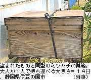 イチゴ畑でミツバチ盗難続発.jpg