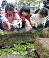 ホタルの幼虫を放流する子どもたち.jpg