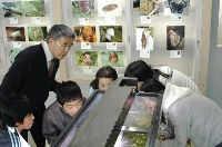 金沢小自然博物館.jpg