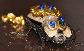 insect as brooch2.jpg